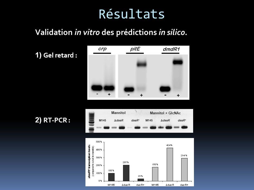 Résultats Validation in vitro des prédictions in silico.