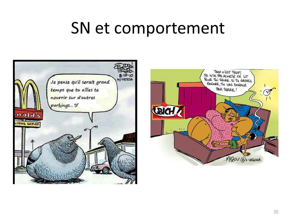 SN et comportement