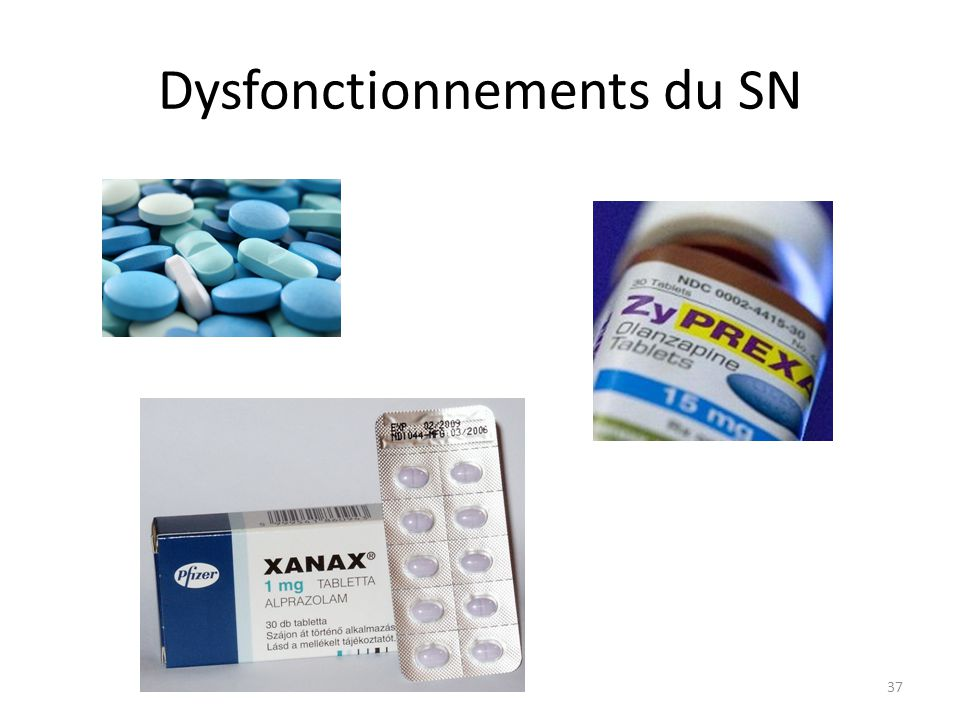 Dysfonctionnements du SN