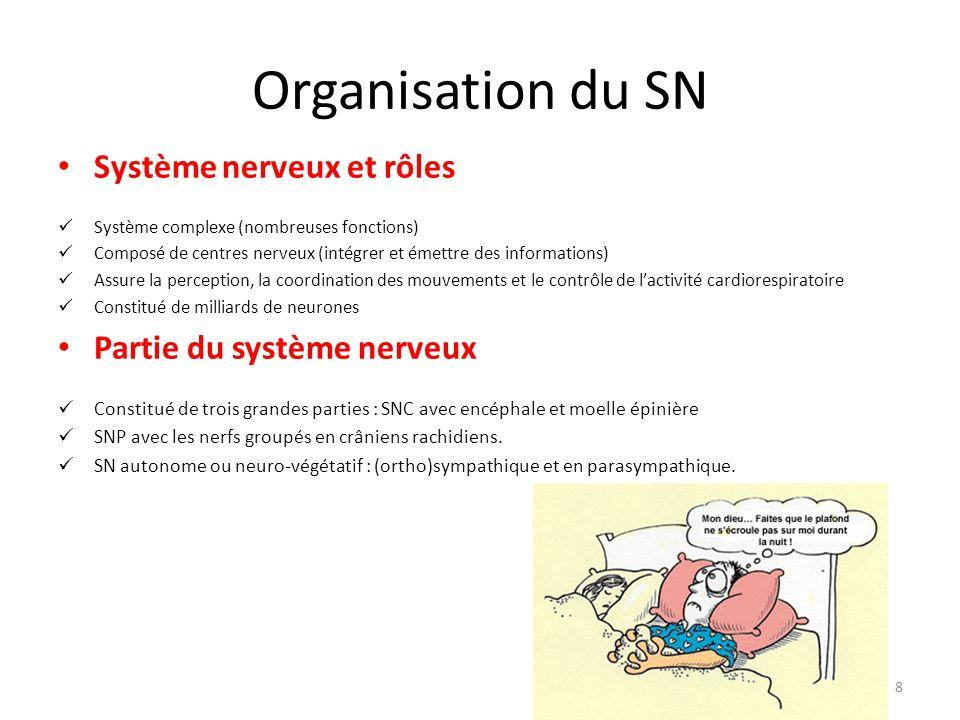 Organisation du SN Système nerveux et rôles Partie du système nerveux