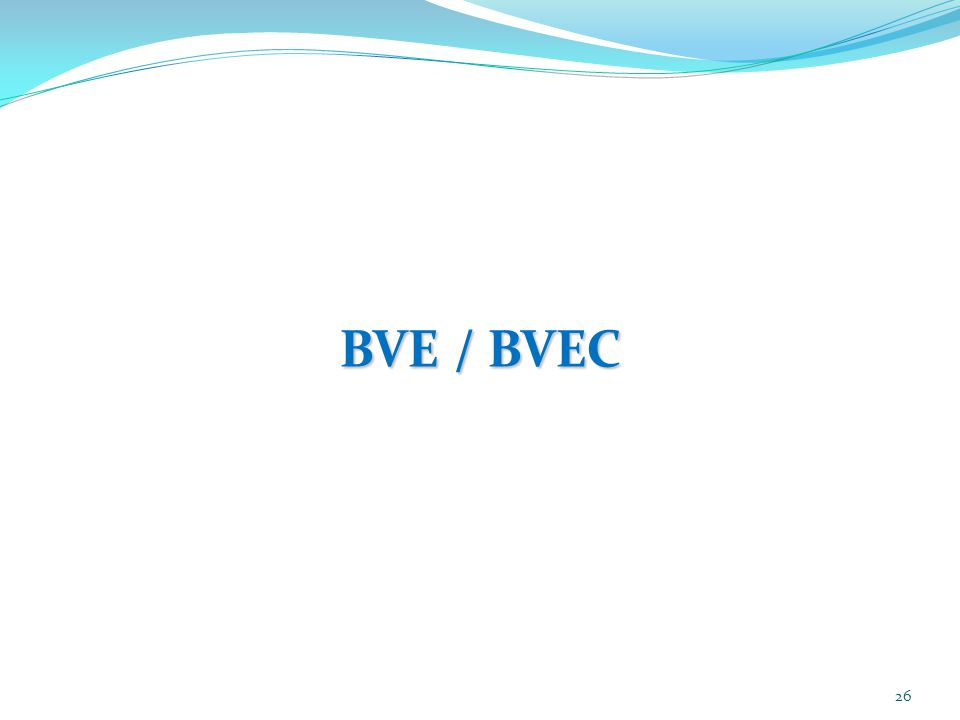 BVE / BVEC