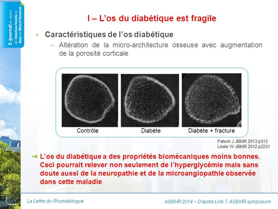 I – L'os du diabétique est fragile