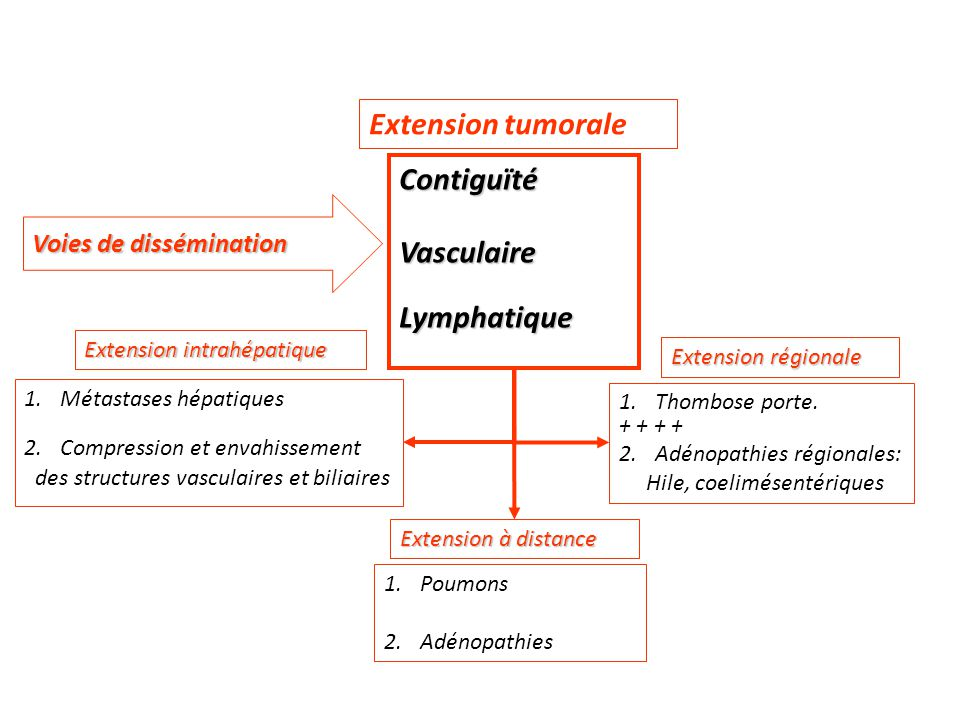 Extension tumorale Contiguïté Vasculaire Lymphatique