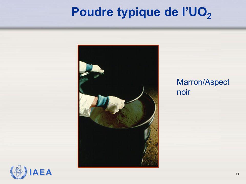 Poudre typique de l'UO2 Marron/Aspect noir