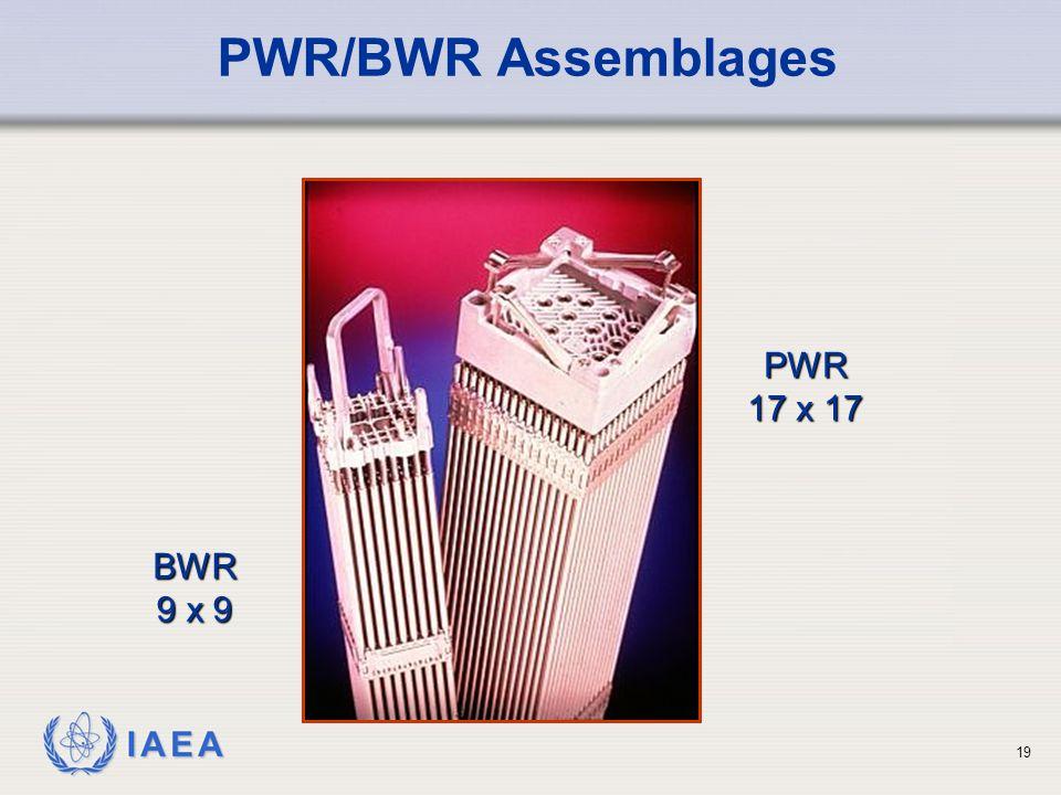PWR/BWR Assemblages PWR 17 x 17 BWR 9 x 9