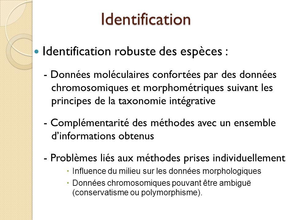 Identification Identification robuste des espèces :