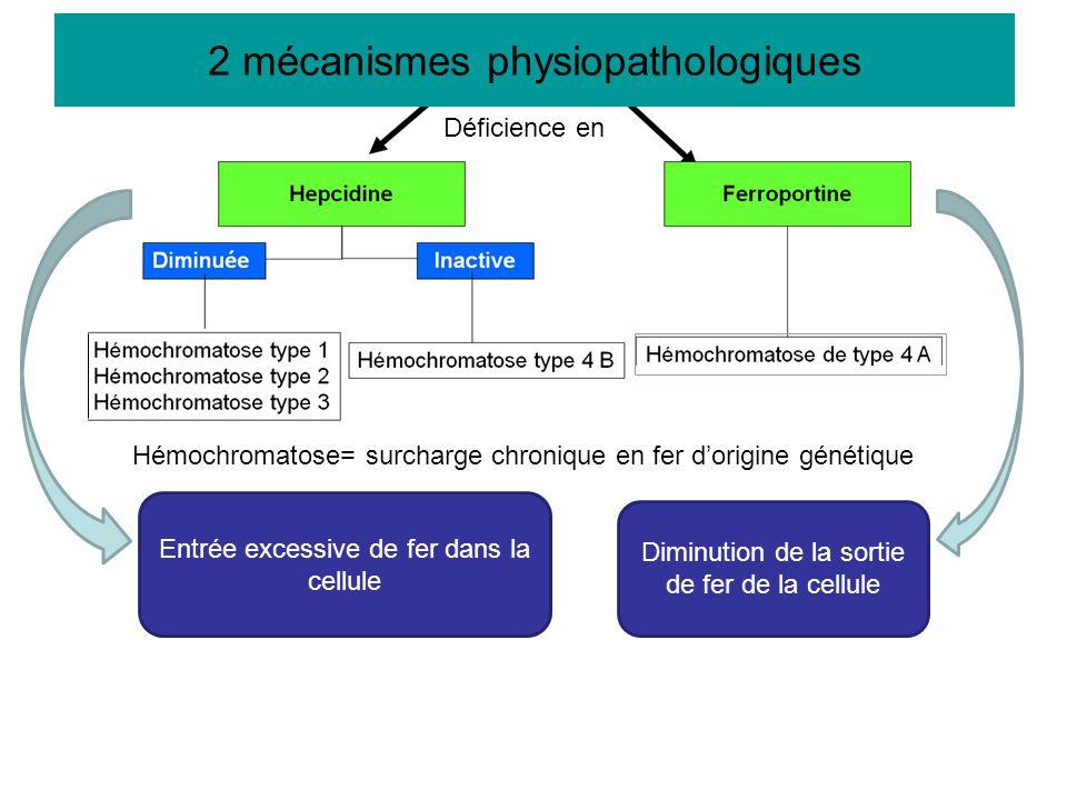 2 mécanismes physiopathologiques