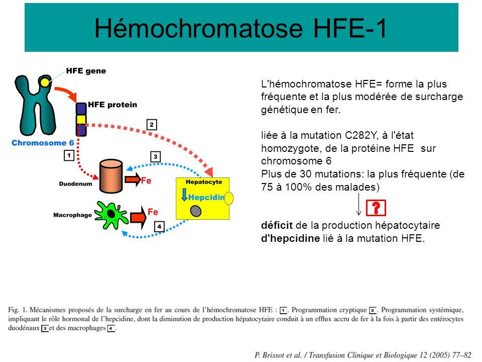 Hémochromatose HFE-1 L hémochromatose HFE= forme la plus fréquente et la plus modérée de surcharge génétique en fer.