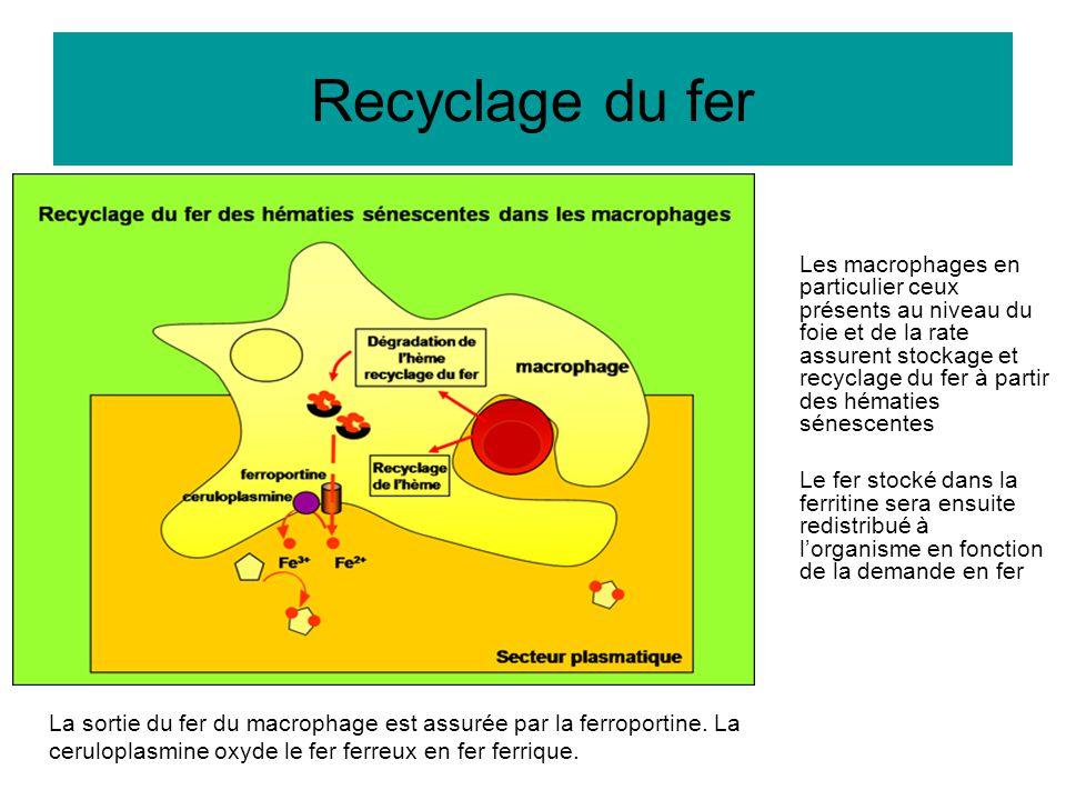 Recyclage du fer