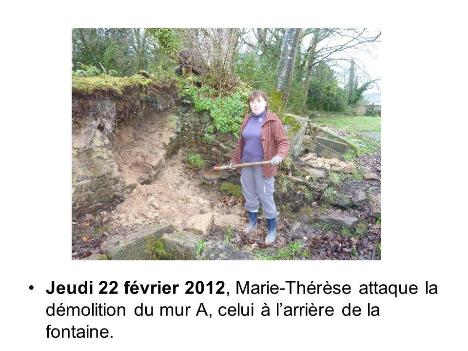 Jeudi 22 février 2012, Marie-Thérèse attaque la démolition du mur A, celui à l'arrière de la fontaine.