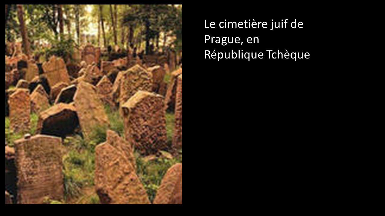 Le cimetière juif de Prague, en République Tchèque