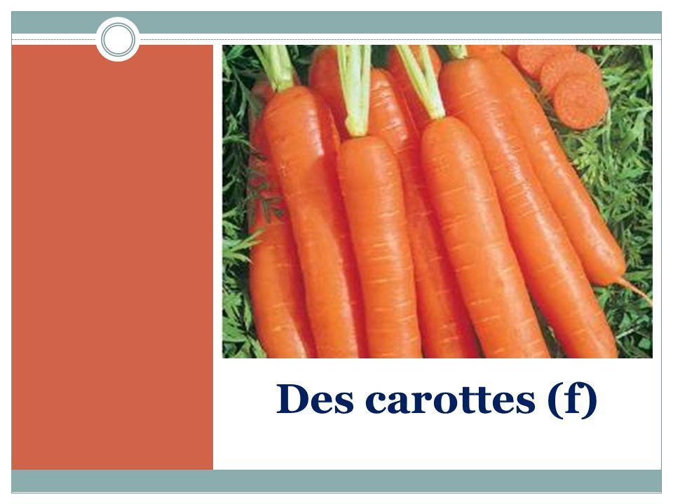 Des carottes (f)