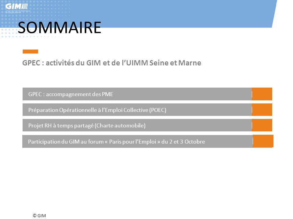 SOMMAIRE GPEC : activités du GIM et de l'UIMM Seine et Marne