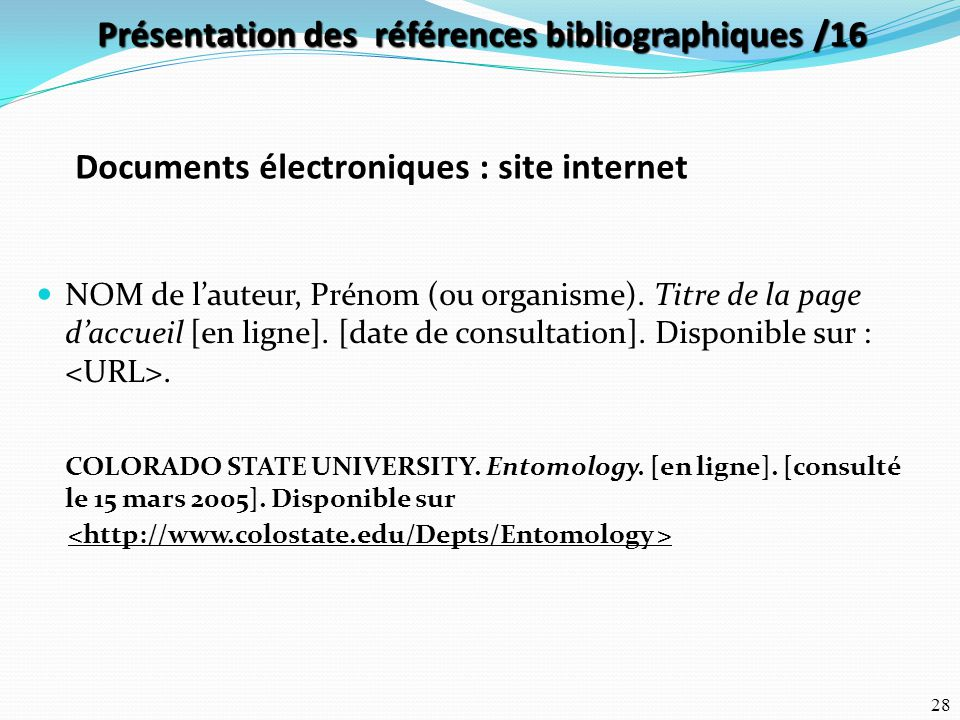 Documents électroniques : site internet