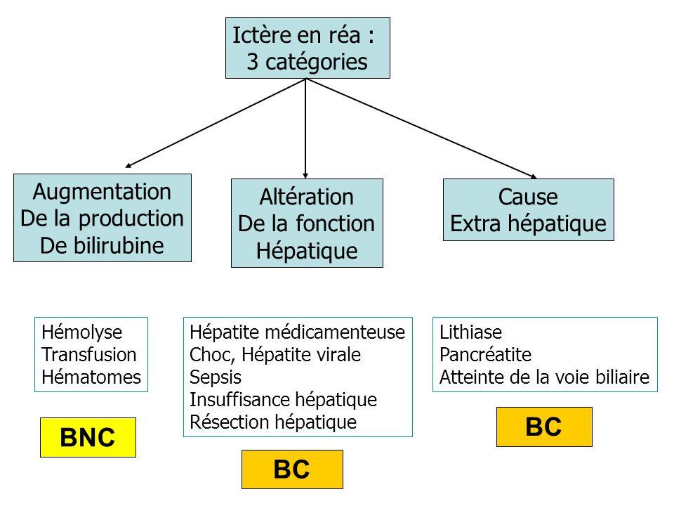 BC BNC BC Ictère en réa : 3 catégories Augmentation De la production