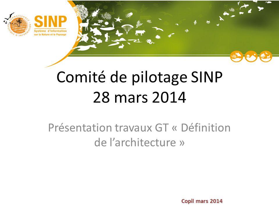 Comité de pilotage SINP 28 mars 2014