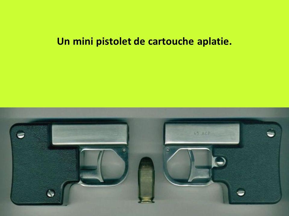 Un mini pistolet de cartouche aplatie.