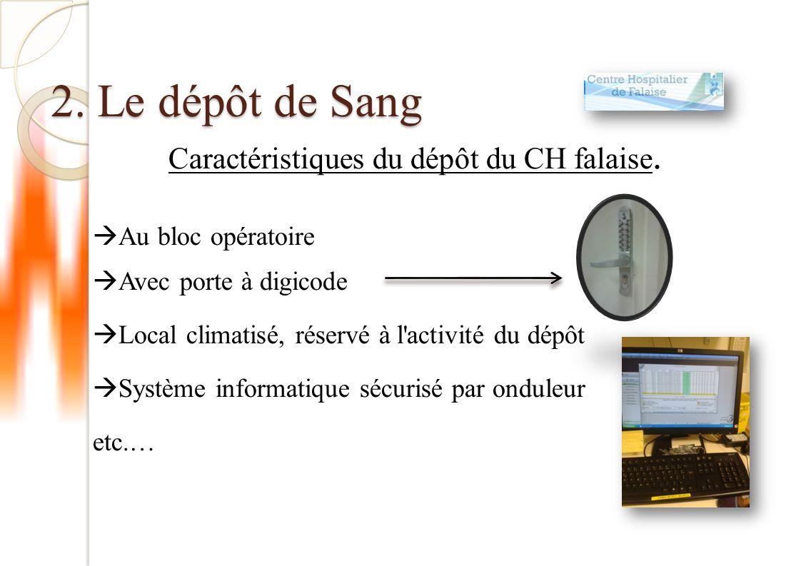 Caractéristiques du dépôt du CH falaise.