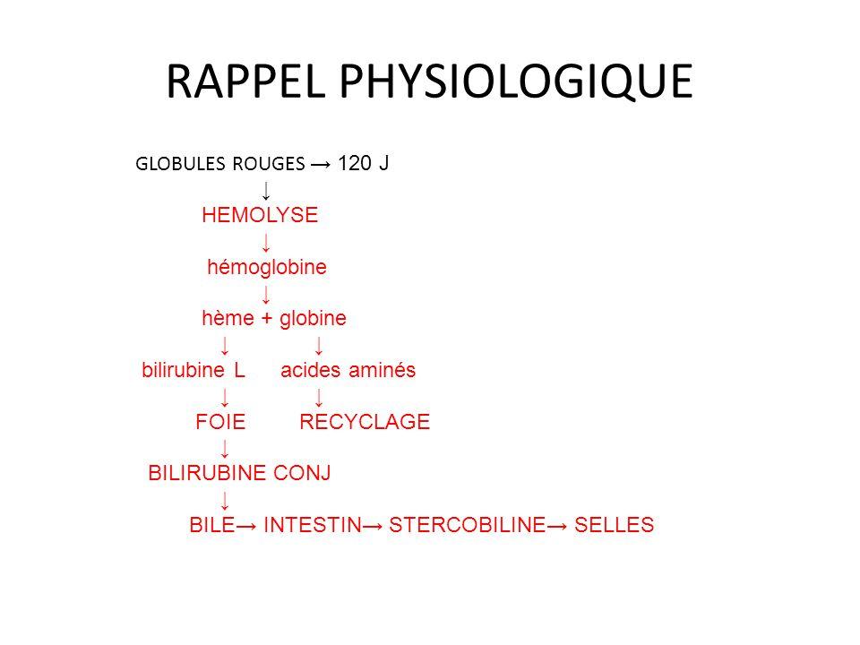 RAPPEL PHYSIOLOGIQUE