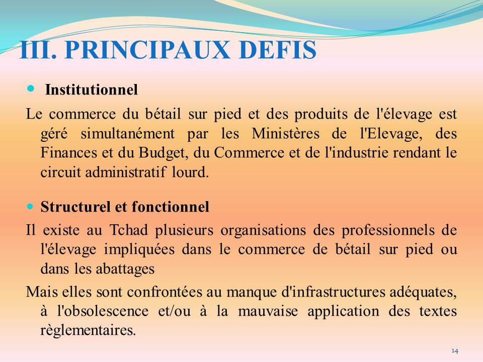 III. PRINCIPAUX DEFIS Institutionnel