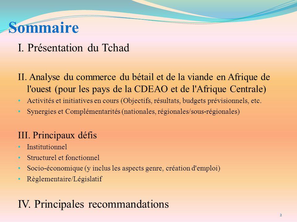 Sommaire I. Présentation du Tchad IV. Principales recommandations