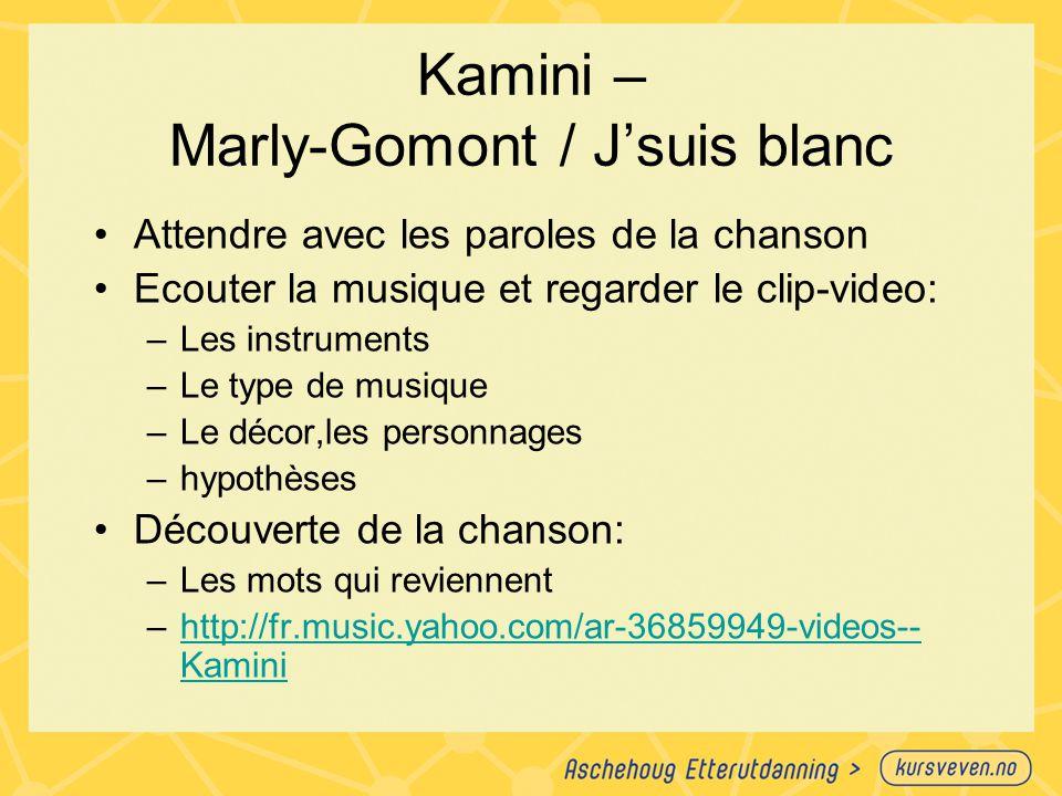 Kamini – Marly-Gomont / J'suis blanc
