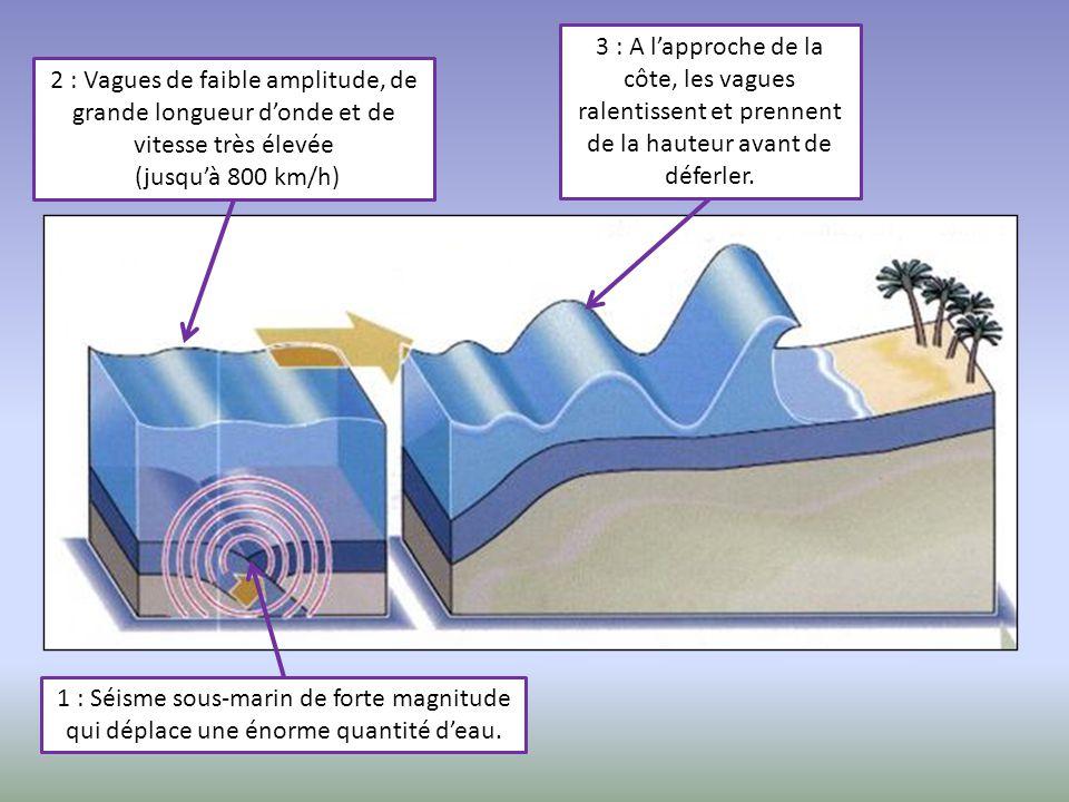 3 : A l'approche de la côte, les vagues ralentissent et prennent de la hauteur avant de déferler.