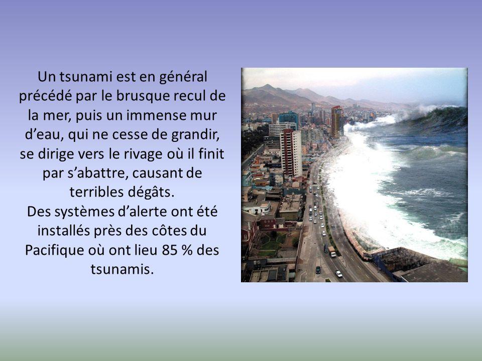 Un tsunami est en général précédé par le brusque recul de la mer, puis un immense mur d'eau, qui ne cesse de grandir, se dirige vers le rivage où il finit par s'abattre, causant de terribles dégâts.