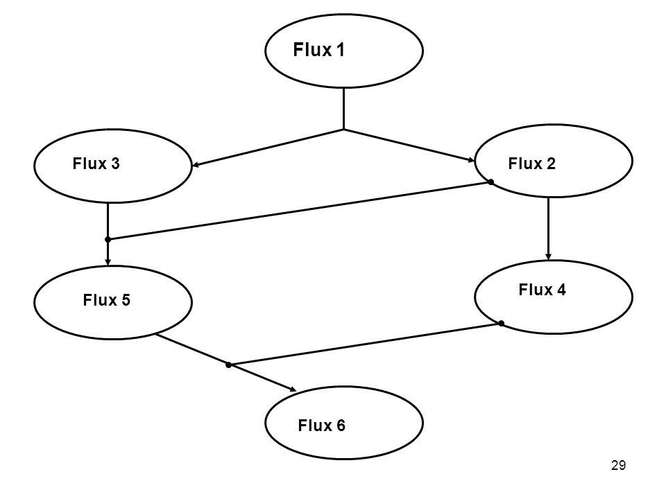 Flux 1 Flux 3 Flux 2 Flux 4 Flux 5 Flux 6