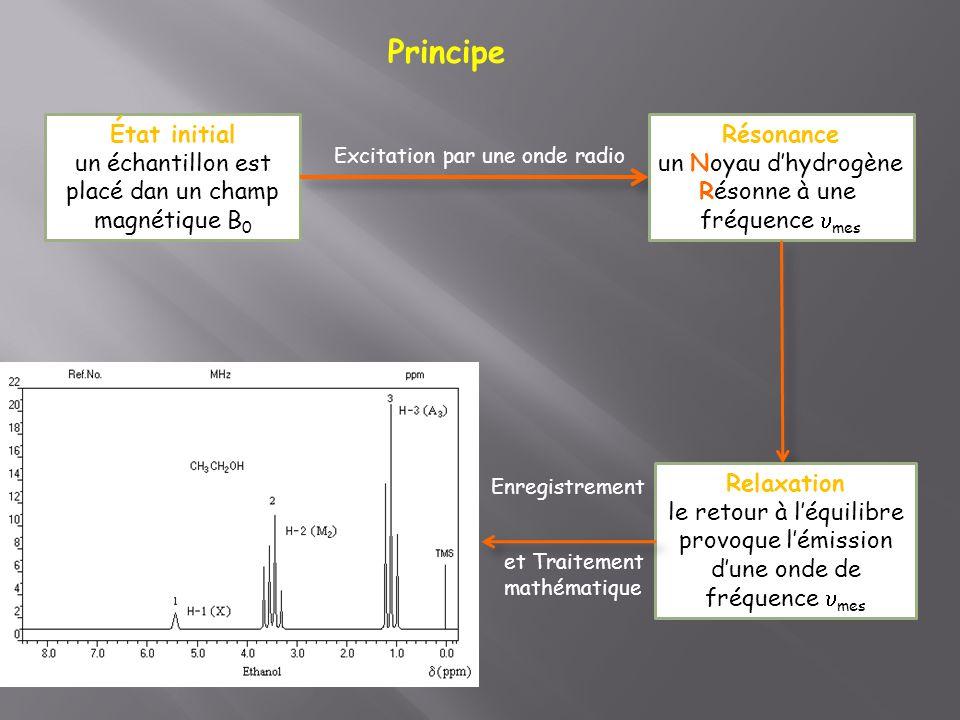 Principe État initial. un échantillon est placé dan un champ magnétique B0. Résonance. un Noyau d'hydrogène.