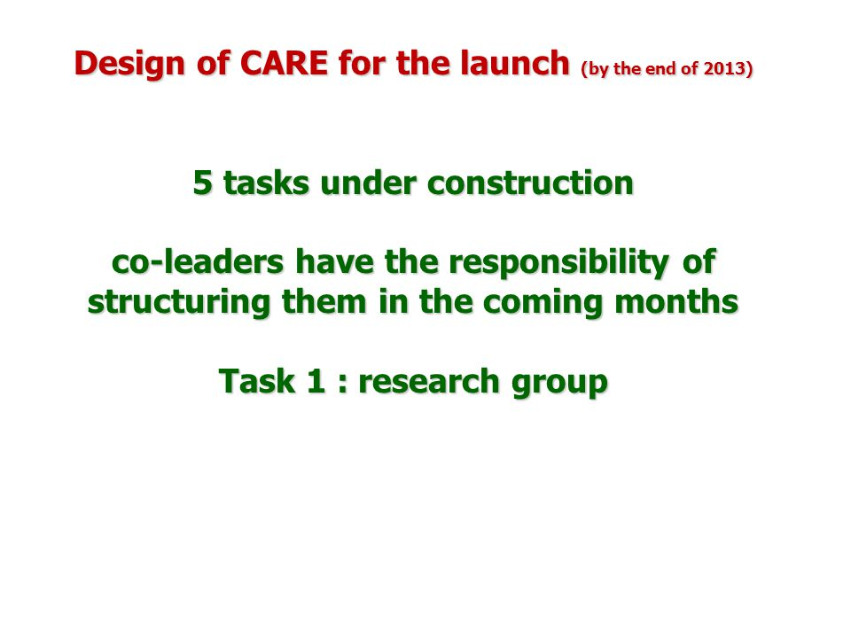 Design of CARE for the launch (by the end of 2013) 5 tasks under construction co-leaders have the responsibility of structuring them in the coming months Task 1 : research group