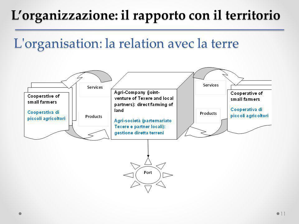 L'organizzazione: il rapporto con il territorio