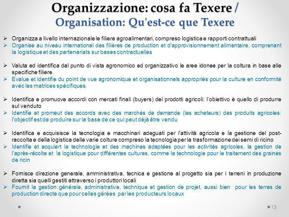Organizzazione: cosa fa Texere / Organisation: Qu est-ce que Texere