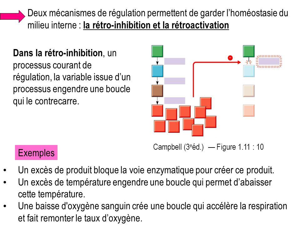 Un excès de produit bloque la voie enzymatique pour créer ce produit.