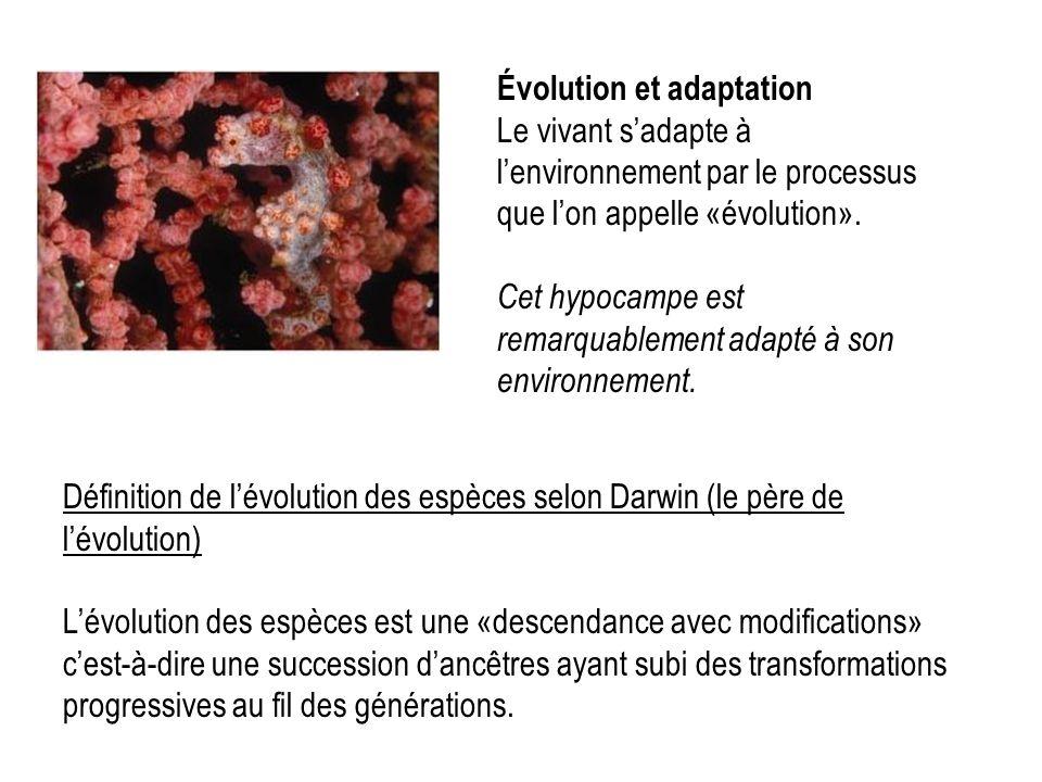 Évolution et adaptation