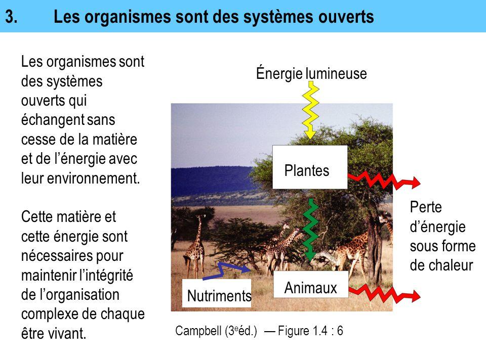 3. Les organismes sont des systèmes ouverts