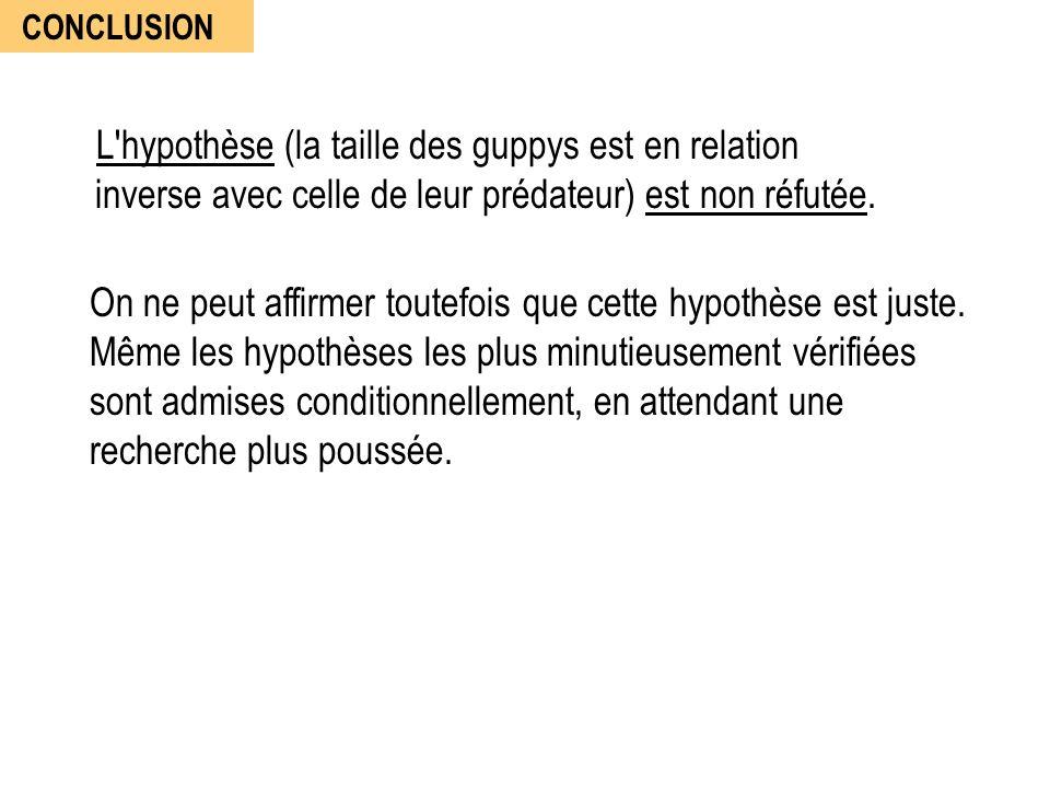 CONCLUSION L hypothèse (la taille des guppys est en relation inverse avec celle de leur prédateur) est non réfutée.