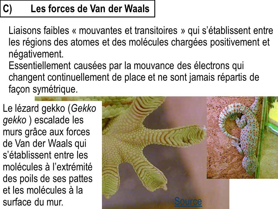 C) Les forces de Van der Waals