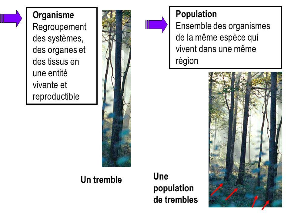 Organisme Regroupement des systèmes, des organes et des tissus en une entité vivante et reproductible