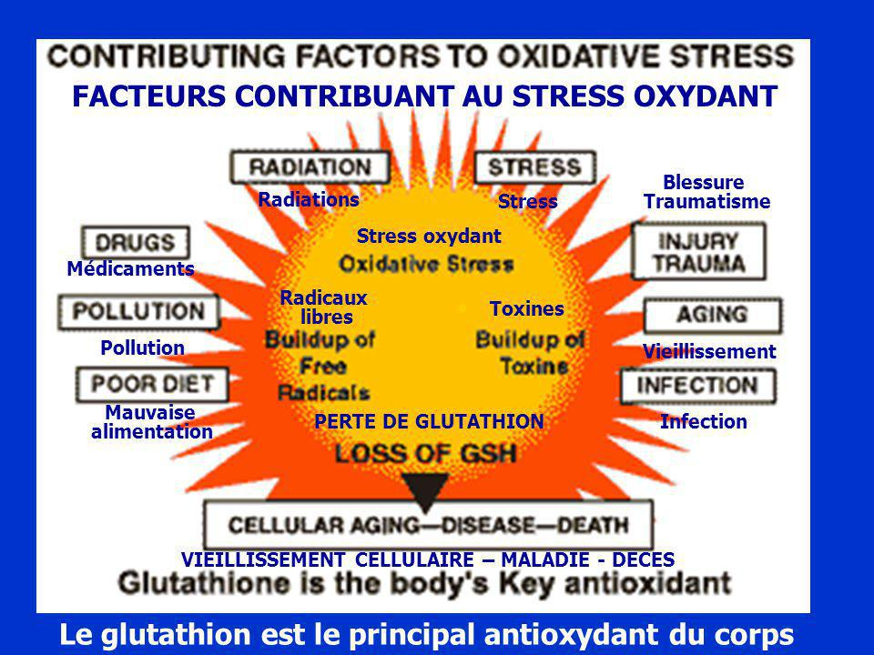 Detoxification and Heavy Metals, an Overview