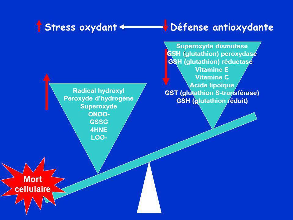 Stress oxydant Défense antioxydante