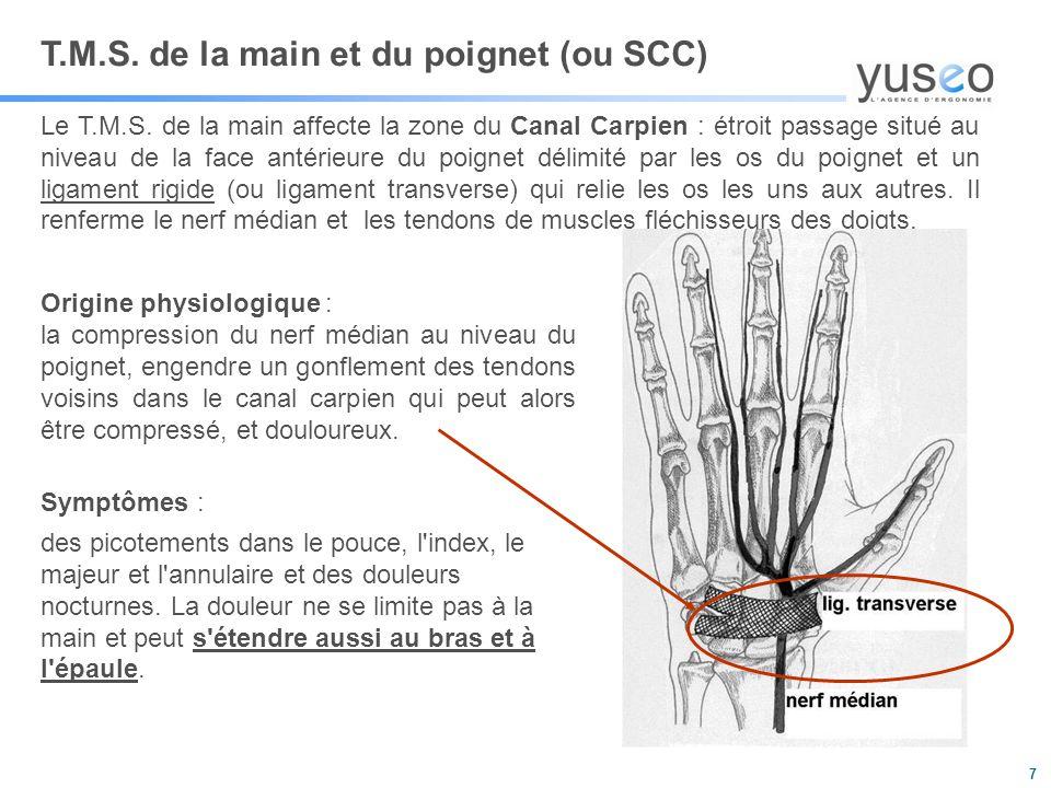 T.M.S. de la main et du poignet (ou SCC)