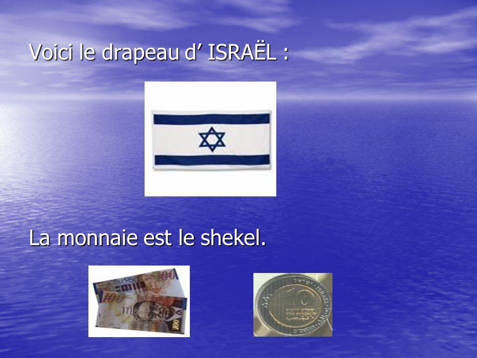 Voici le drapeau d' ISRAËL :