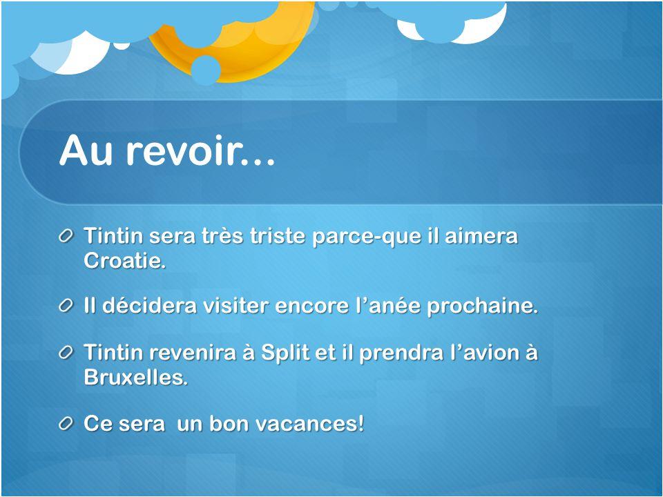 Au revoir... Tintin sera très triste parce-que il aimera Croatie.