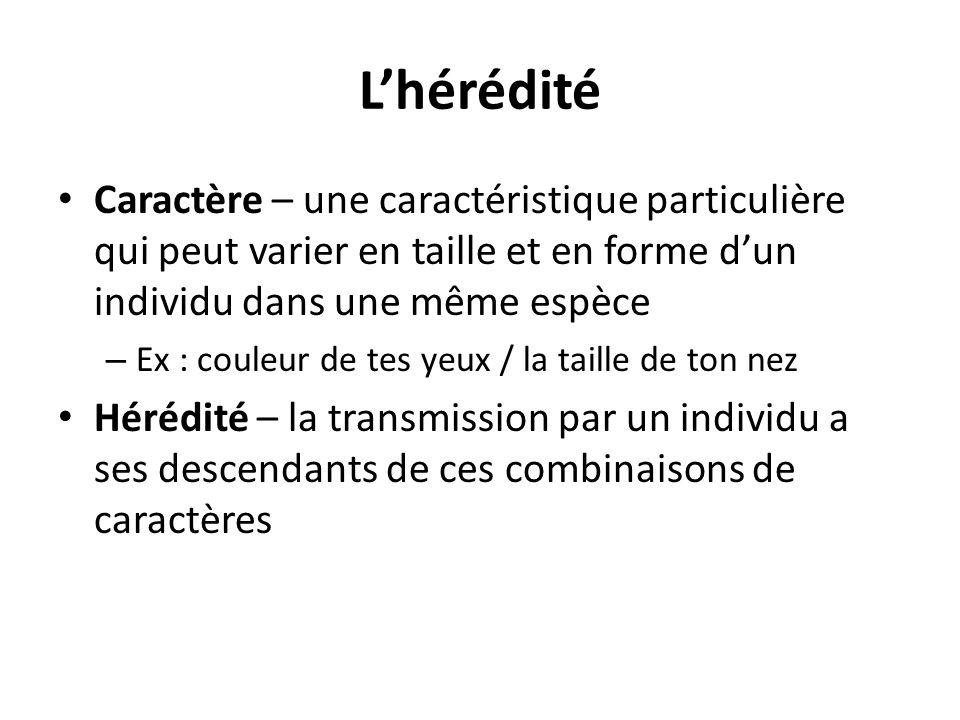L'hérédité Caractère – une caractéristique particulière qui peut varier en taille et en forme d'un individu dans une même espèce.