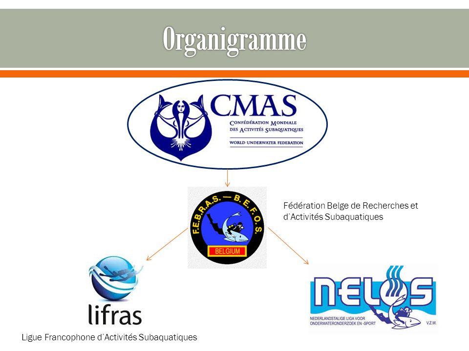 Organigramme Fédération Belge de Recherches et d'Activités Subaquatiques.