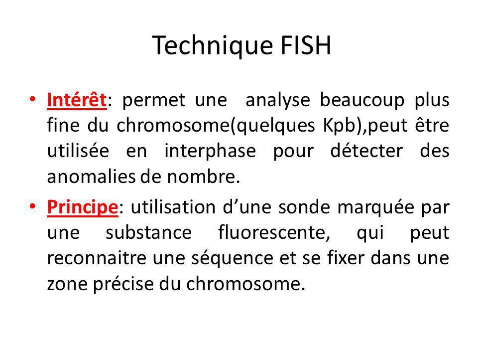 Technique FISH