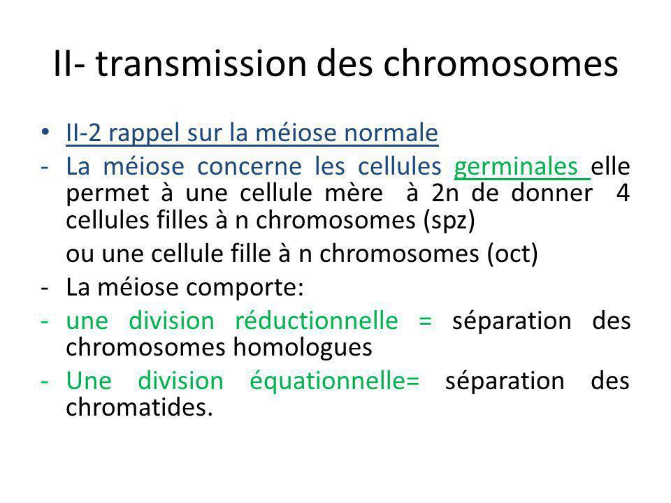 II- transmission des chromosomes