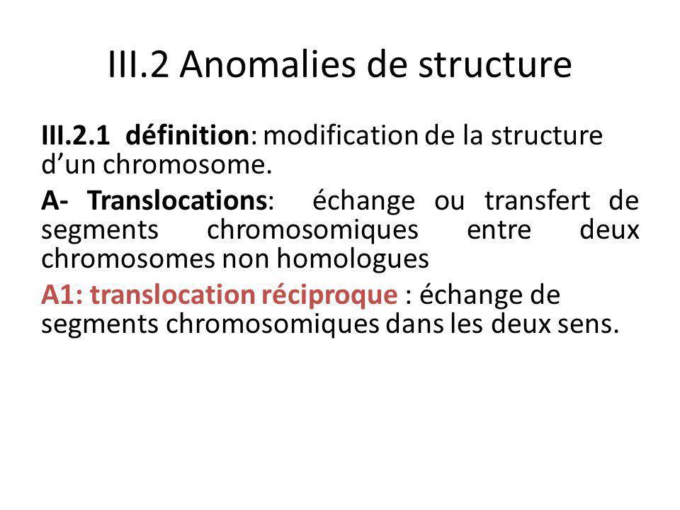 III.2 Anomalies de structure