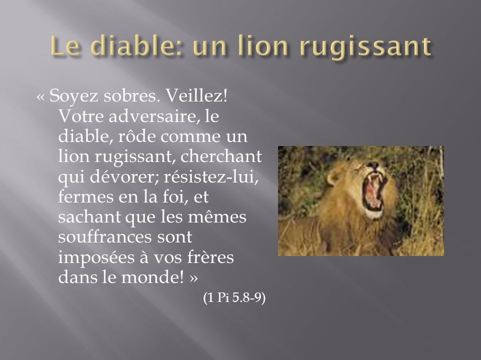Le diable: un lion rugissant